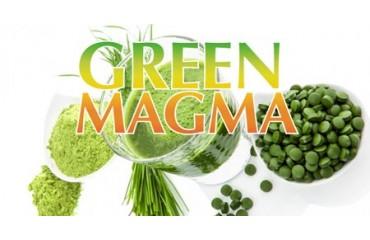 Domande frequenti sul Green Magma